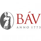 BAV_Corporate_Muker_logo